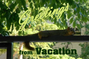 vacation_pc1 copy