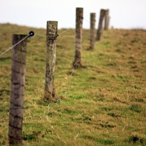detail_fence2