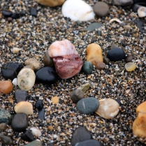 detail_rocks copy