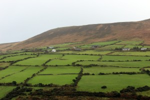 dingle_blog1