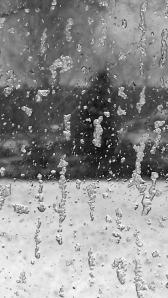 windowsleet
