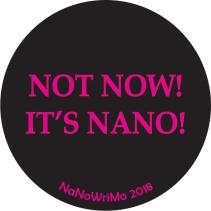 Nano2